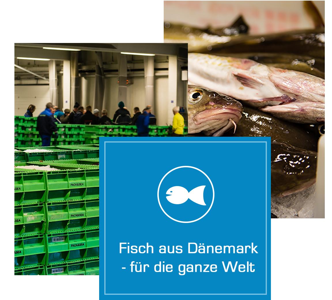 Fisch aus Dänemark für die ganze Welt